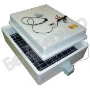 Инкубатор Несушка на 77 яиц (автомат, цифровое табло, вентиляторы, испаритель, 220+12В) + Гигрометр, арт. 67ВГ