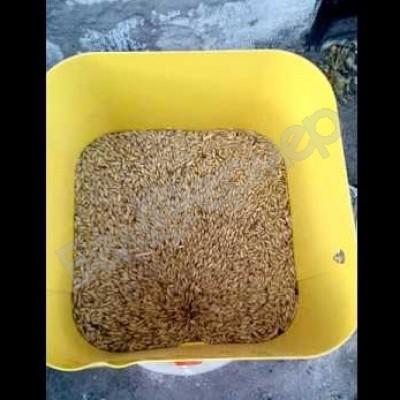 Измельчитель зерна (зернодробилка) Ярмаш Пчелка-400 кг/ч